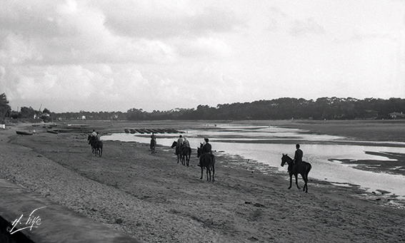 Lac d'Hossegor 1958