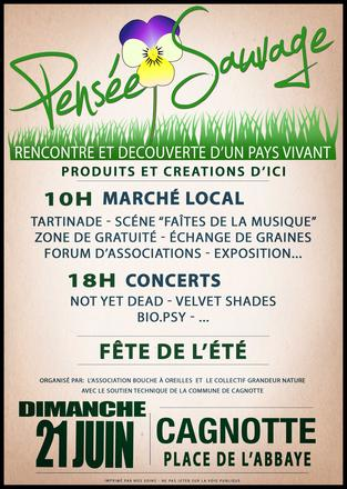Dimanche-21-juin-10-h-Marche-local-Pensee-Sauvage_large