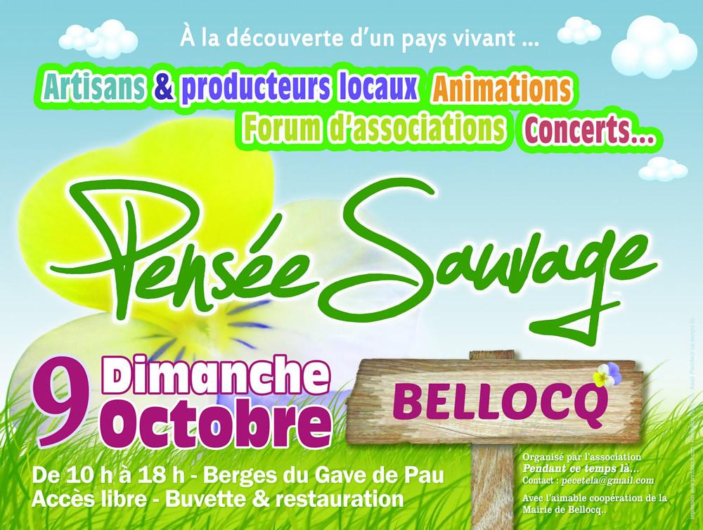 Marché -Pensée Sauvage - octobre2016 - Bellocq